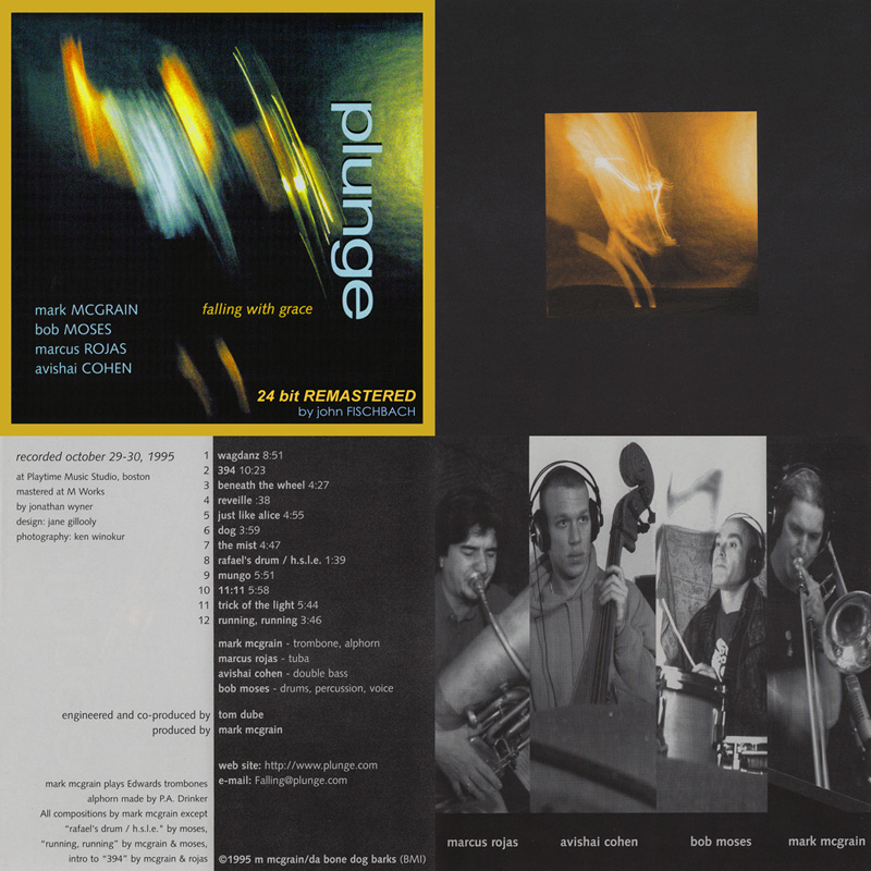 PLUNGE: Falling With Grace (remastered) - Immersion Records 1995/2009