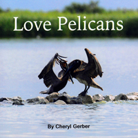 Book: Love Pelicans by Cheryl Gerber